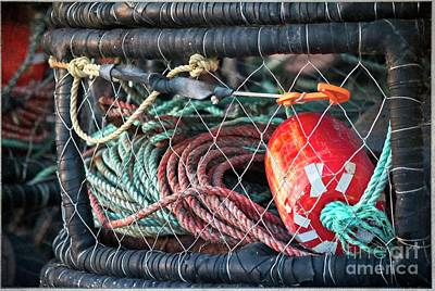 Photograph - Buoy And Ropes by Teresa Wilson