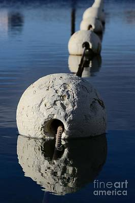 Photograph - Buoy In Detail by Stephen Mitchell