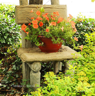 Photograph - Garden Landscape No. B4 by Monica C Stovall