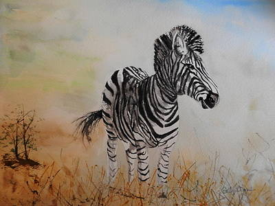 Painting - Burchell Zebra by Betty-Anne McDonald