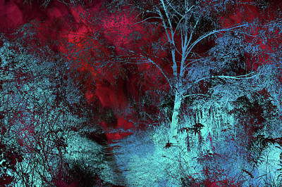 Silver Moonlight Photograph - Burgundy Red Moonlight by Jenny Rainbow