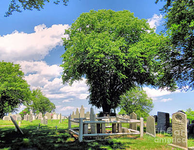 Photograph - Burial Hill In June  by Janice Drew