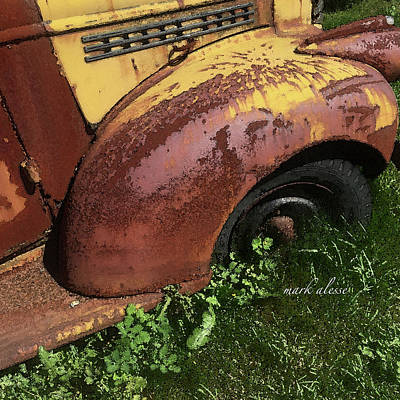 Photograph - Buried In Rust by Mark Alesse
