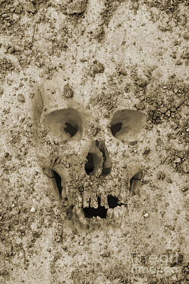 Montage Photograph - Buried Skull by Dave Gordon