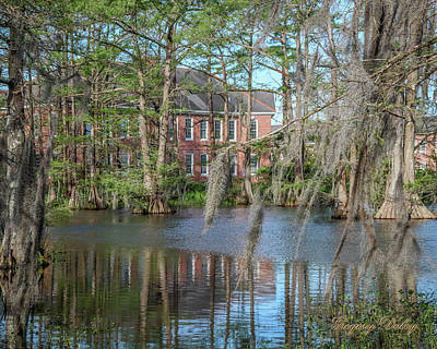 Photograph - Burke Hall Cypress Lake by Gregory Daley  PPSA