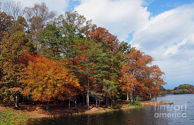 Photograph - Burke Lake Park by Gina Savage