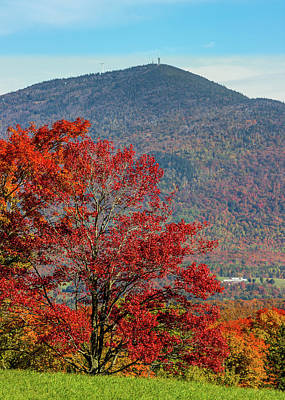 Photograph - Burke Mtn Fall Scene by Tim Kirchoff