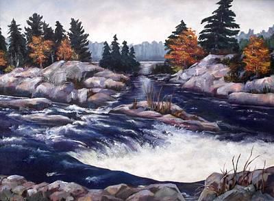 Burleigh Falls Art Print by Diane Daigle