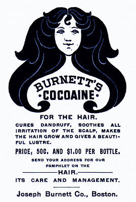 1890s Drawing - Burnett's Cocaine For The Hair - 1896 by Mountain Dreams