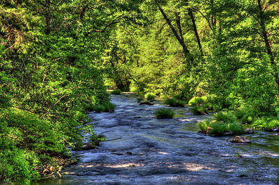 Photograph - Burney Creek 3 by Richard J Cassato