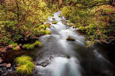 Photograph - Burney Creek by PhotoWorks By Don Hoekwater