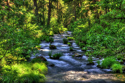 Photograph - Burney Creek by Richard J Cassato