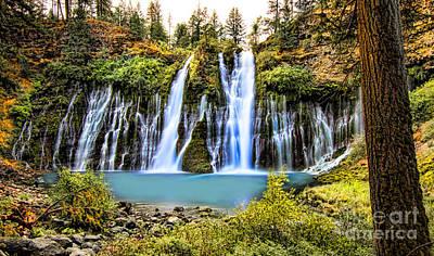 Photograph - Burney Falls by Jason Abando
