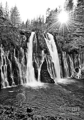 Burney Falls Star Print by Jamie Pham