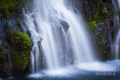 Photograph - Burney Falls  by Vincent Bonafede