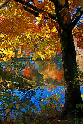 Photograph - Burnham Pond Autumn Reflection 2 by Allen Beatty