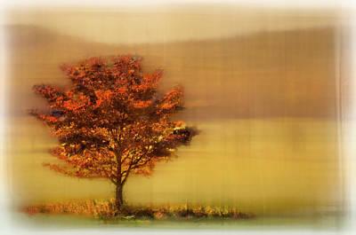 Photograph - Burning Bush Dreamscape by Debra and Dave Vanderlaan