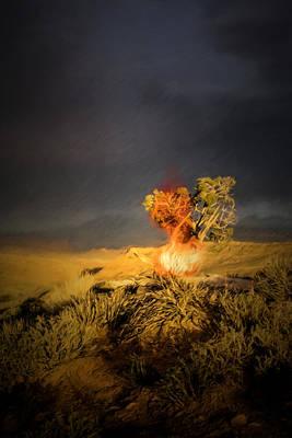 Burning Bush Digital Art - Burning Bush by John Haldane
