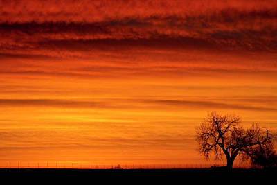 Burning Country Sky Print by James BO  Insogna
