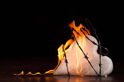 Photograph - Burning Love by Yvette Van Teeffelen