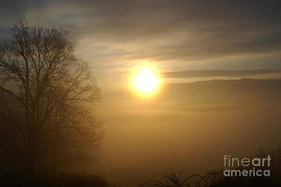 Photograph - Burning Off The Fog by Annlynn Ward