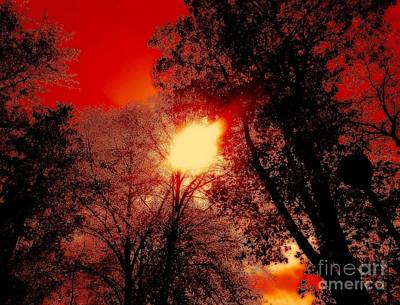 Photograph - Burning Sky by Erika H
