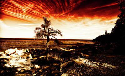 Photograph - Burning Sky by Venura Herath
