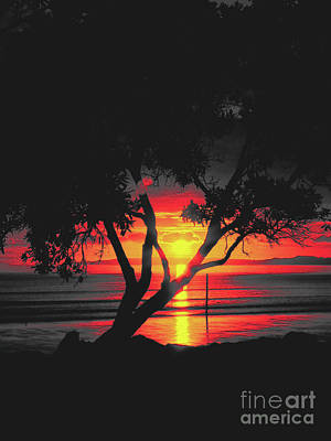 Photograph - Burning Sunrise by Karen Lewis