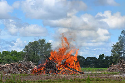 Photograph - Burning The Woods by rd Erickson