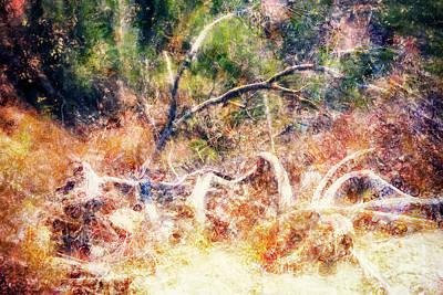Burning Bush Digital Art - A Representation Of The Burning Bush by Davy Cheng