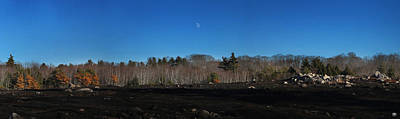 Photograph - Burnt Blueberry Barren And Moon by John Meader