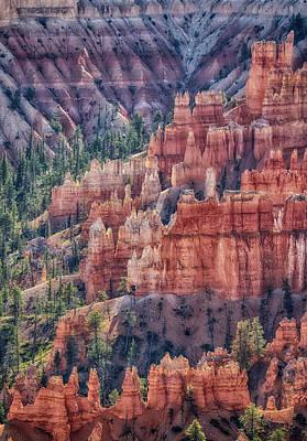 Target Threshold Nature - Burnt Orange Colors HDR by Mitch Johanson