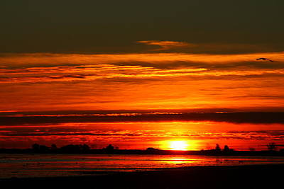 Photograph - Burnt Orange Sunrise by Suzanne DeGeorge