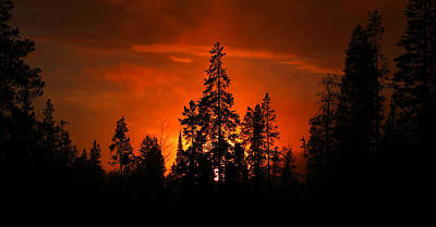 Photograph - Burnt Orange Sunset by David Andersen