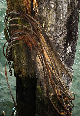Photograph - Burnt Pilings by Robert Potts