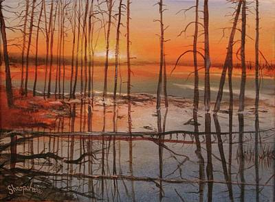 Basin Park Painting - Burnt Reflections by Tom Shropshire