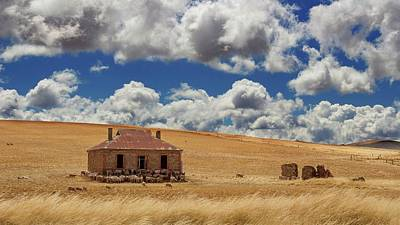 Photograph - Burra by Tim Nichols