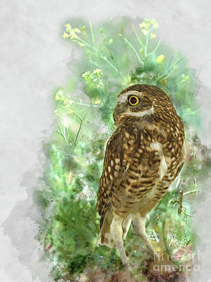 Mixed Media - Burrowing Owl In Profile by Kathy Kelly