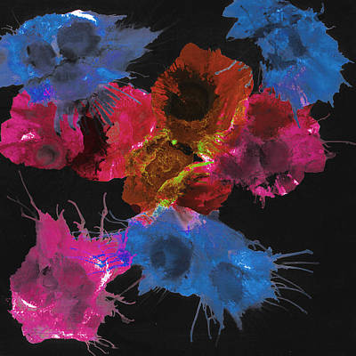 Bursting Comets 2017 - Blue And Pink On Black Art Print