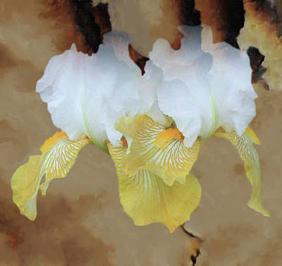 Mixed Media - Burth Cloudy Paper by Dennis Buckman