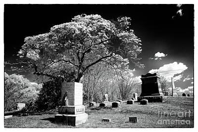 Bury Me Under A Tree Art Print by John Rizzuto