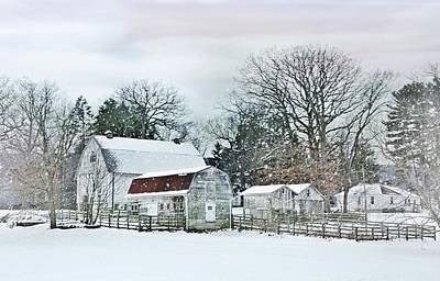 Photograph - Bush Barn by Stephanie Calhoun