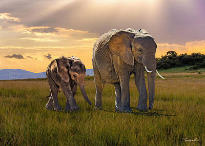 Digital Art - Bush Elephant Cow And Calf by Spadecaller