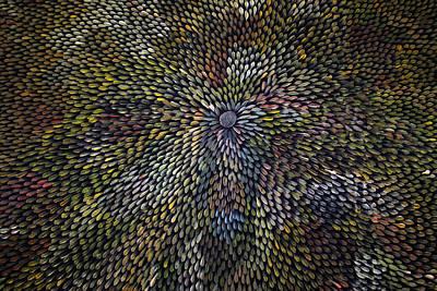 Indigenous Australians Painting - Bush Leaf Medicine by Margaret Scobie