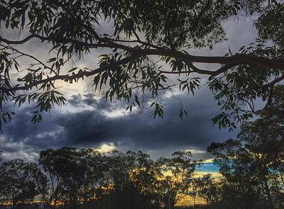Photograph - Bush Sunset by Marty  Cobcroft