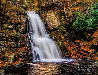 Photograph - Bushkill Falls by Nick Zelinsky