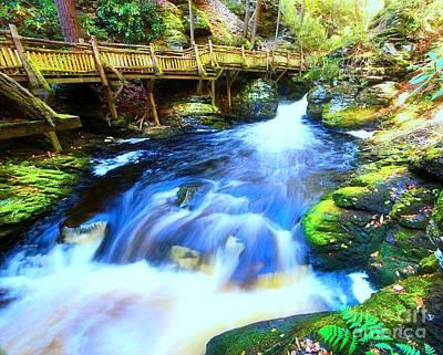 Photograph - Bushkill Falls by Traci Law