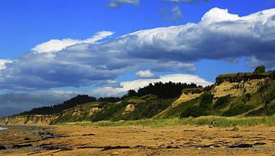 Photograph - Bushy Beach by Nareeta Martin