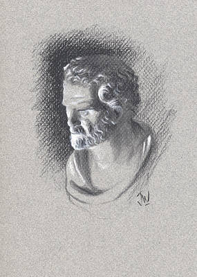 Drawing - Bust 473 by Joe Winkler