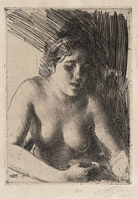 Drawing - Bust by Anders Zorn